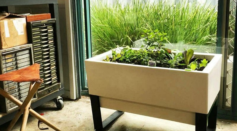 featured-self-watering