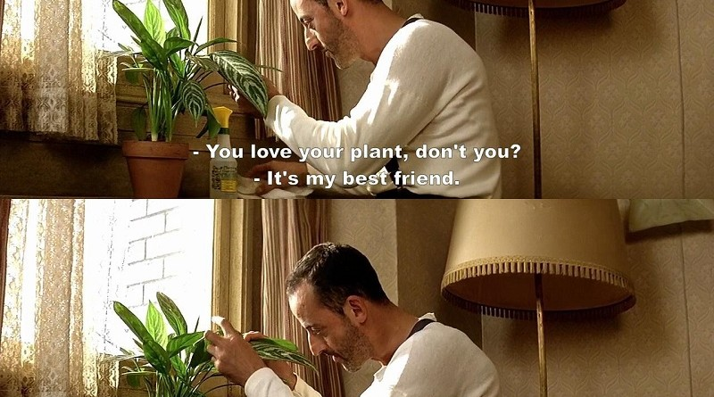 A Small Flat, a Guy and a Plant that Knows How to Thrive