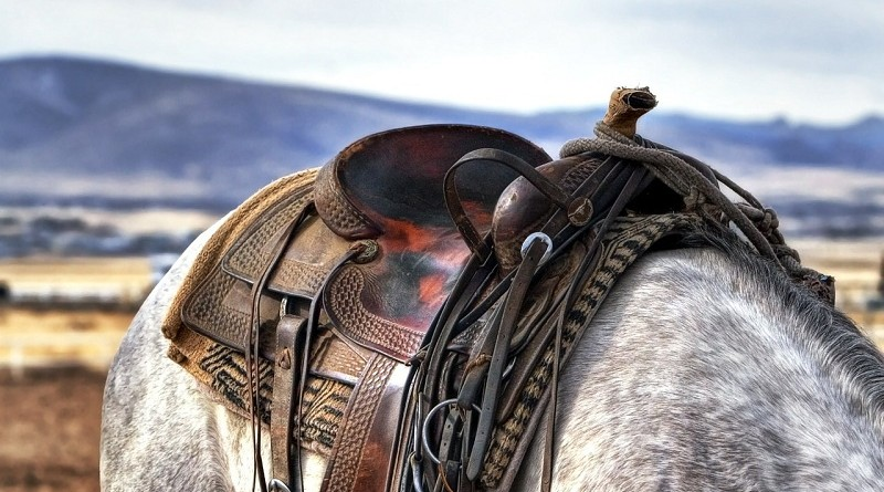 Horseback Riding: Who Should Wear What
