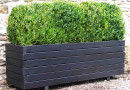 Planters for the Energetically & Aesthetically Challenged