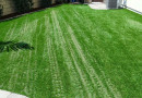 Bring Your Yard to Life Year-Round With Fake Grass