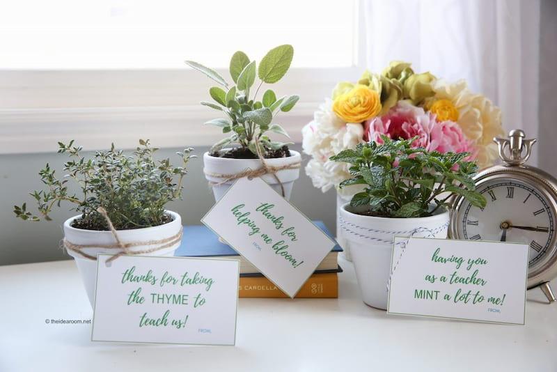 plants gift