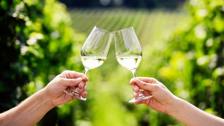 Organic Trends: Add Organic Sparkling Wines on Your Daily Menu
